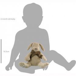 So groß ist der Hund im Vergleich zum Baby