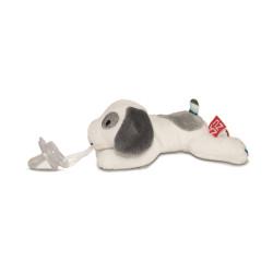 Dexy - für alle Hundefreunde