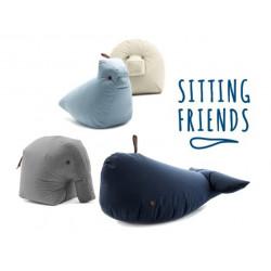 Wal Jonas mit den anderen Sitting Friends